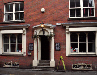 Bay horse northern quarter
